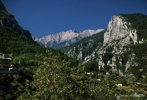 travel trees film rock 35mm rocks europe hiking 1988 slide greece quartzite scannedslide mtolympus pieria litochoro makedoniathraki