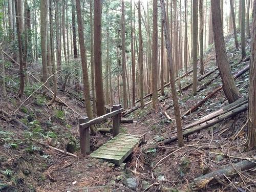 菩提山城跡ハイキングコース