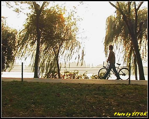 杭州 西湖 (其他景點) - 278 (在西湖十景之 蘇堤 上看西裡湖的黃昏)