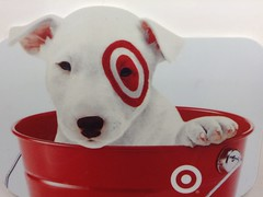 Adjusting Marketing Strategy at Target