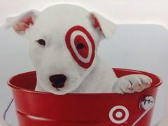 Adjusting Marketing Strategy at Target