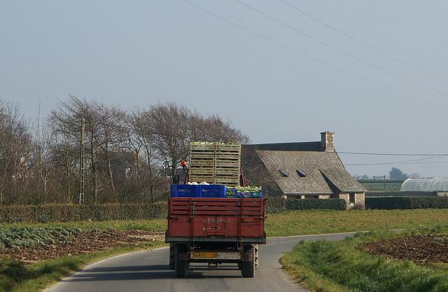 Brittany-56.jpg