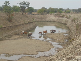 The Shirpur structure in Daitynandur