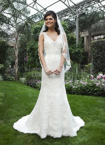 Fancy Lace Fit N Flare V Neck Natural Waist Floor Length Wedding Gown