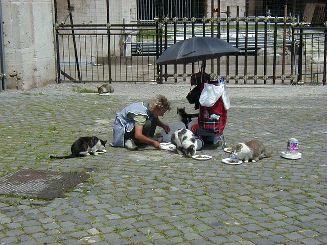 ROMA ARCHEOLOGIA e BENI CULTURALI:  9 aprile 1921 Muore Ernesto Nathan il sindaco che tolse la trippa ai gatti romani, LA REPUBBLICA (10|04|2014).