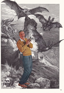 When Sam Stumbled Upon the Valley of Behemoth Bats He Was Glad He Could Prove It With a Film. However, He Didn't Bargain For the Mother of All Bats to Rip Off His Head As He Was Doing It.