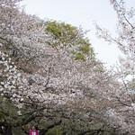 0405_ueno-5