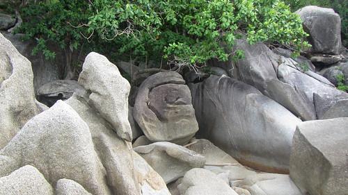 Koh Samui Coral Cove