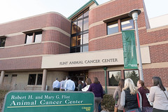 Veterinary Management Institute at Colorado State University