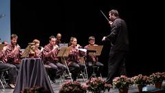 22 Premi Enric Valor Castalla 2017-2