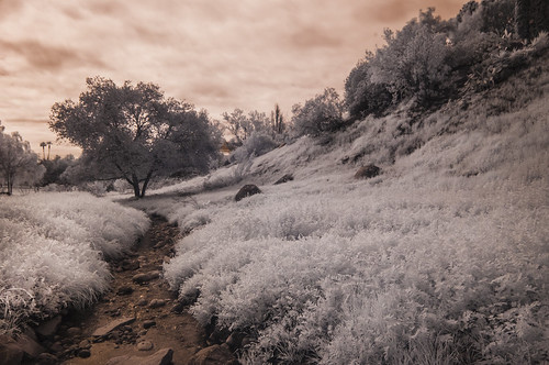 oakcreek eucalyptushills creek water vegetation sky clouds convertedinfraredcamera ir infrared infraredphotography nature