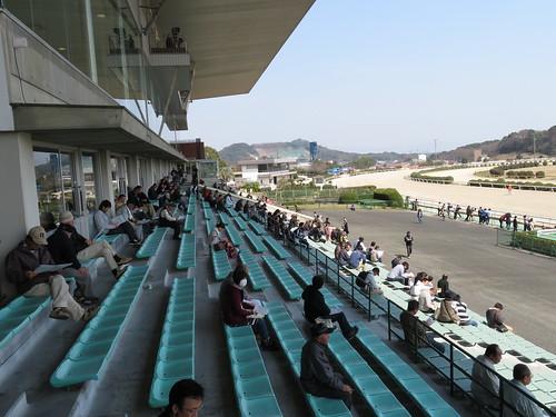 佐賀競馬場のバルコニーから見たスタンド
