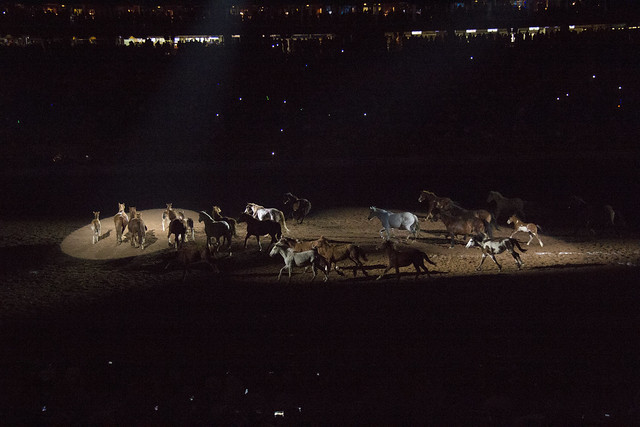 Rodeo and Concert2_116