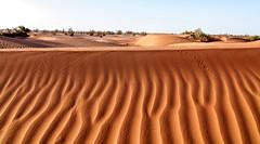 2013 04 Sahara