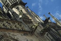 Wasserspeier am Münster