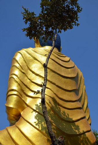 Buddha by Ginas Pics
