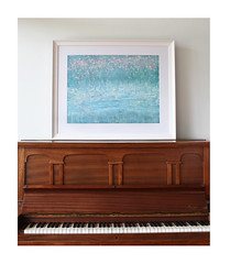 Framed Print of Blossom in the Wind