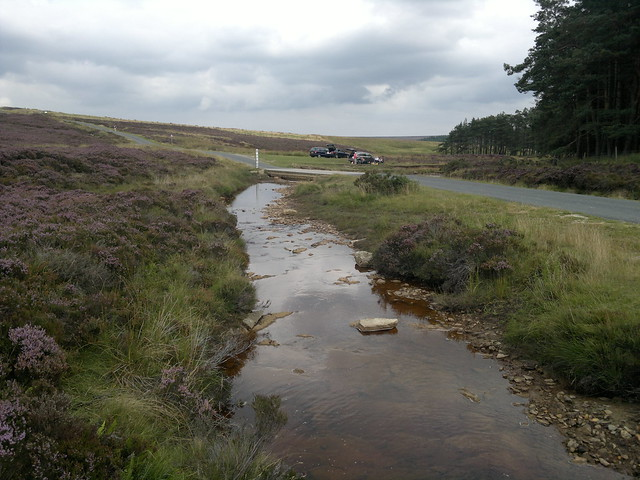 Wheeldale Moor Stream #1