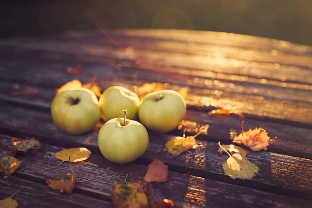 Fallen leaves and apples
