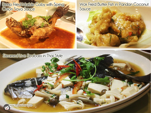 Seafood International Assorted Fish dishes
