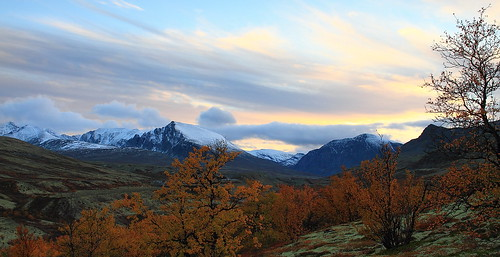 nationalpark autumncolors rondanenationalpark vassberget dørålseter dørålen nordrehammeren trondsphoto
