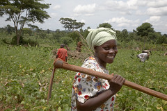 Nejjemba Teopista, farmer of Kayunga and farmer's group animator, holding her hoe after working in a communal garden at Kangulumira where food is grown to feed the poor and sick. Caritas Uganda project, 2008. Photo: Sean Sprague, CARITAS
