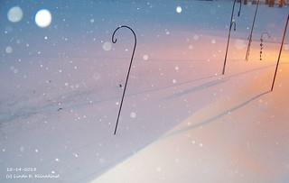 100_9006 - Winter 2013 - 12-14-2013
