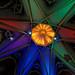 Notre-Dame-du-Cap-Dome changement de couleur