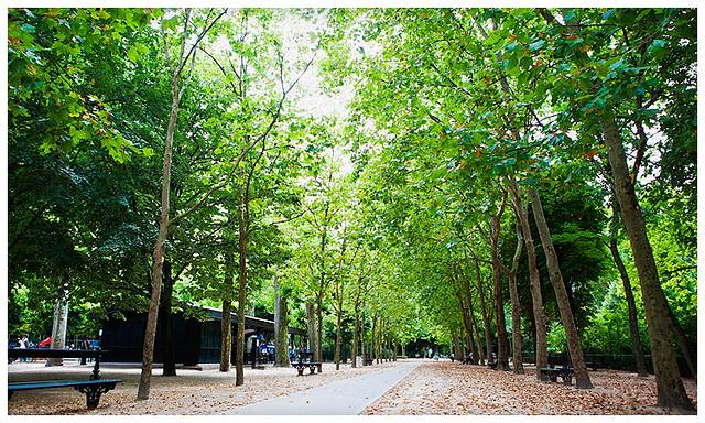 hbfotografic-paris-parks (2)