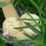Eiscreme Rezepte ©Tarragon Ice Cream