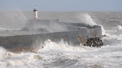 Stormy Seas In Newhaven