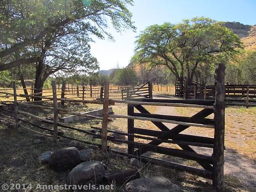 The trail into Faraway Ranch, Chiricahua National Monument, Arizona