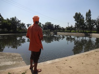 The pond at Seechewal village, where sewage collects.