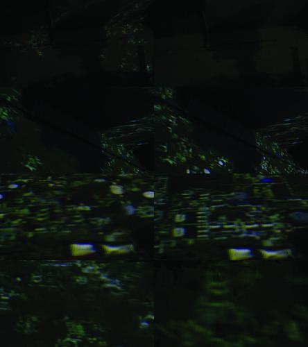 Field Skeleton Silhouette [Projection] [Stills]