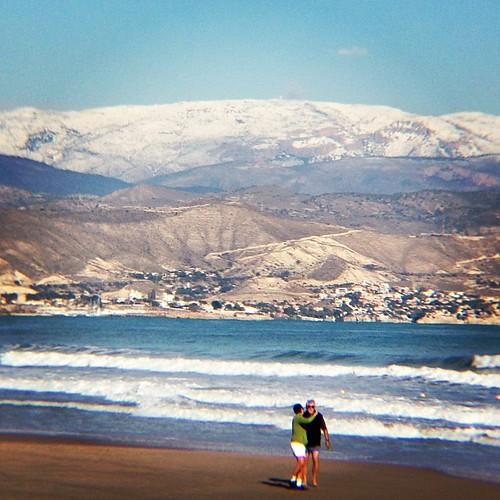 Nevada en Alifornia-Alicante.