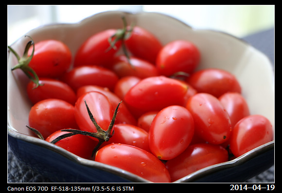 20140419_Tomato