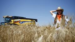 Перспективы развития сельского  туризма в Краснодарском крае