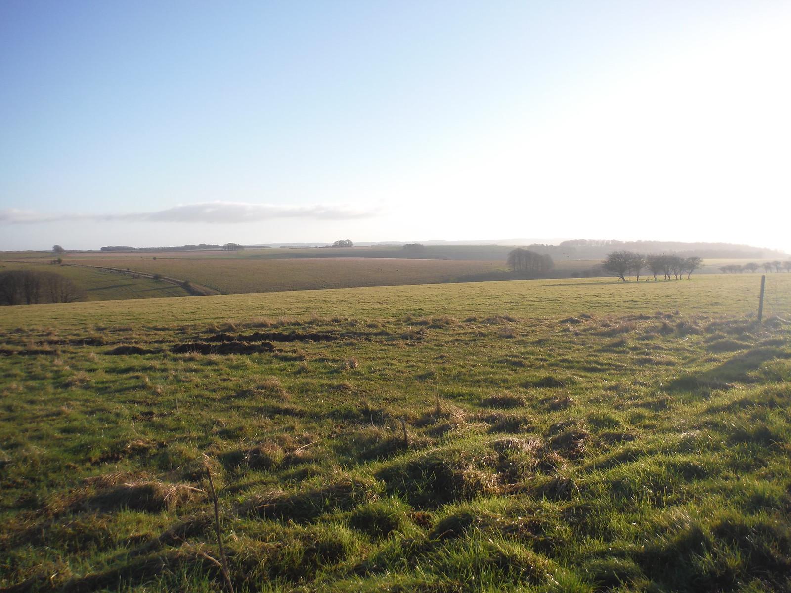 Salisbury Plain, off American Road SWC Walk 286 Westbury to Warminster (via Imber Range)