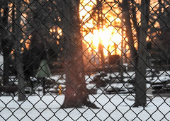 Winter Sunset Thru Playground Fence; Long Island, New York