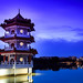 Chinese Garden Twin Pagodas at blue hour