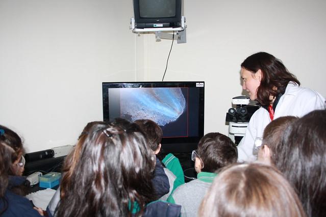 Visita del Colegio Green House de Temuco a unidad de genómica y bioinformática del CGNA.