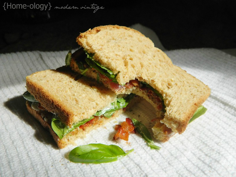 bacon + basil