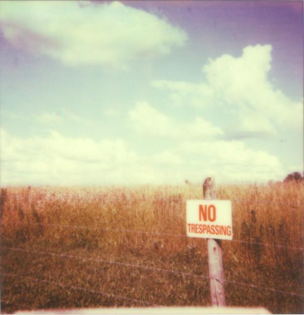 Polaroid_48