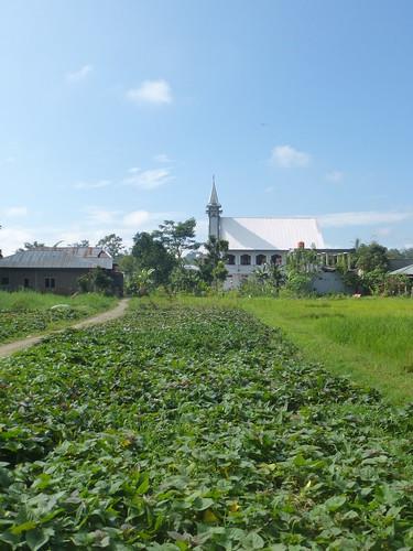 Sulawesi13-Rantepoao (12)