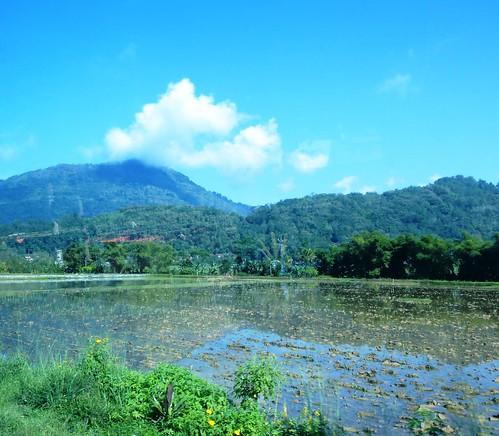 Sulawesi13-Rantepao-Makale (12)
