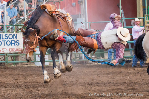 Benton County Fair and Rodeo 2013-6959