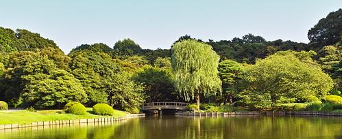 池と柳と橋 by leicadaisuki