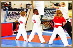 striking combat sports(1.0), individual sports(1.0), contact sport(1.0), taekwondo(1.0), sports(1.0), tang soo do(1.0), combat sport(1.0), martial arts(1.0), karate(1.0),