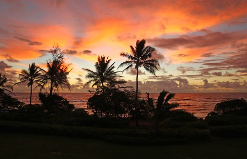 canon kauai mygearandme flickrstruereflection1 flickrstruereflection2 flickrstruereflection3 inspiringcreativeminds