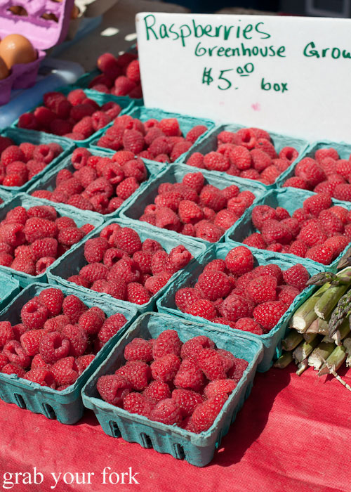 Raspberries greenhouse grown ruit Logan Square Farmers Market greenmarket producers Chicago Illinois